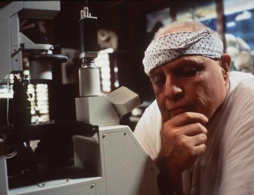 Porno, brujería y un Marlon Brando fuera de control: el demencial rodaje de 'La isla del Dr. Moreau' aún fascina 25 años después